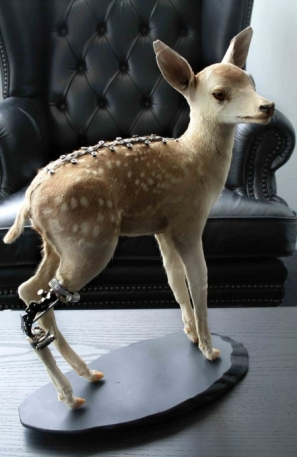 Taxidermie m?canique