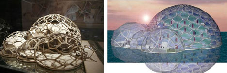 The Celestopia Project