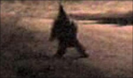 creepy gnome terrorizes town