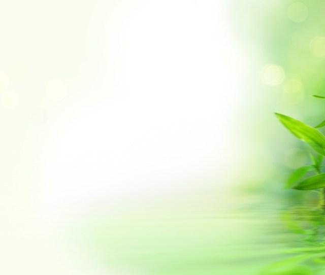 Green Wallpaper  Bamboo Reflection Hd Desktop Background