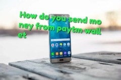 send money from paytm wallet