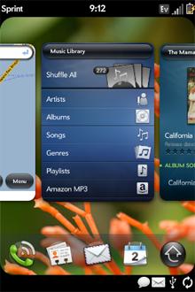 Palm Pre Card Interface