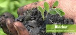 Soil health environment friendly remedy: Biochar