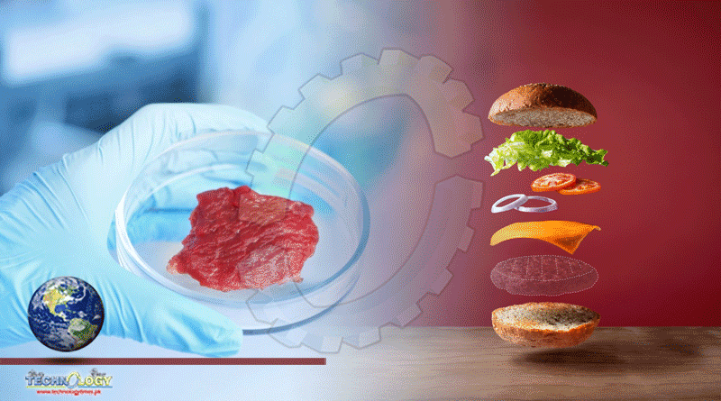 Synthetic Meat Is The New Frontier Of Food - Technology Times