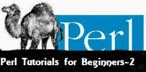 Learn perl scripting online with basic tutorials(Loops, File I/O and Subroutines) (Part 2)