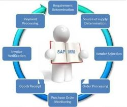 What is Sap Material Ledger Periodic Unit Price? - Technosap