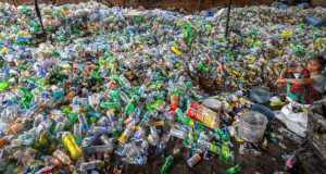 Plastic Thermocol banned India