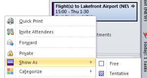 Bing Travel Task Details