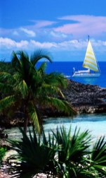 HTC HD2 Nature Wallpaper Pack Beach and Yacht Wallpapers