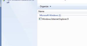 IE 9 in Installed Updates