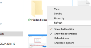 Show Hide Files Folders Extensions