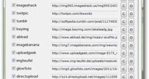 Upload image to multiple image hosting websites in one go