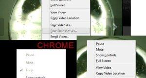 Vine Video Download