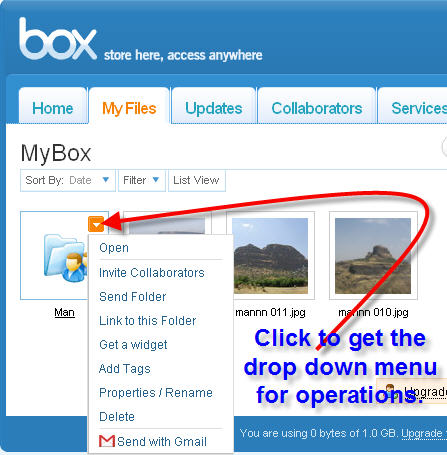 Features in Box.Net