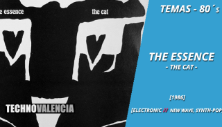 temas_80_the_essence_-_the_cat