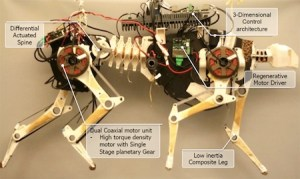 MIT Robot Cheetah Video Shows Gait Transition: Science Fiction in the News