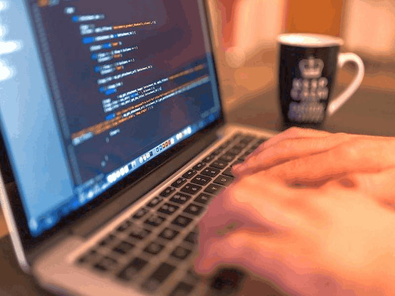 5 Top Programming Languages For Developers