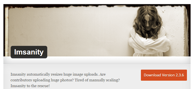 image : best wordpress plugin imsanity to resize images and speed up your website