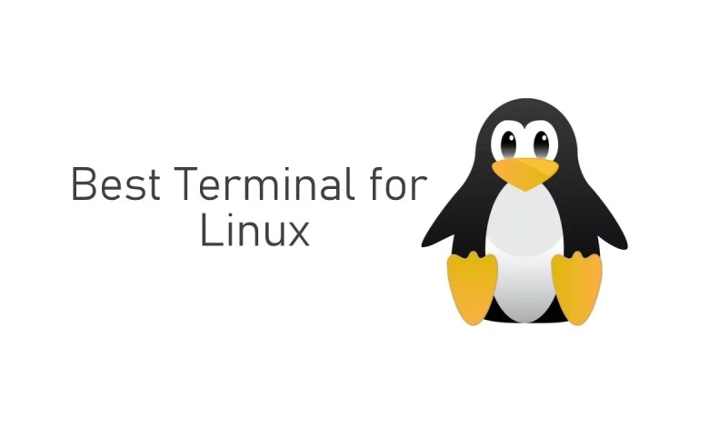 Best Terminal for Linux