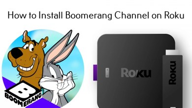 Photo of How to Setup and Watch Boomerang on Roku