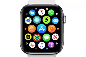 Press Apple Watch Companion App