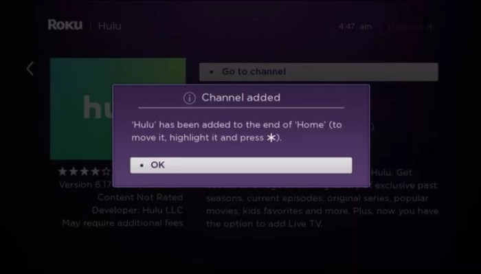 Click OK to finish Hulu on Roku installation