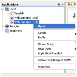 VisualVM process ID