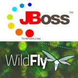 Jboss or Wildfly