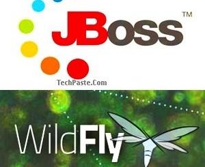 Jboss or Wildfly