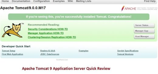 Apache Tomcat 9 Application Server