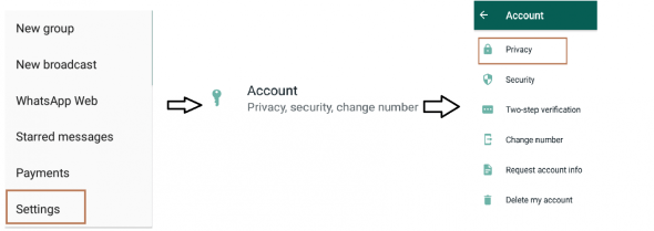 Account Privacy - Show Offline on Whats app (Hide Your Online Status)