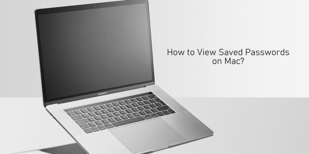 How to View Saved Passwords on Mac [3 Easy Ways]