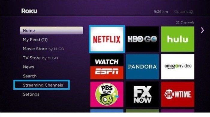 Roku Homescreen _ Streaming Channels