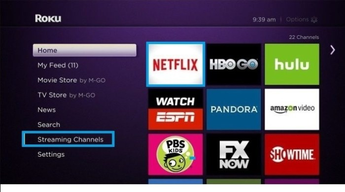 Roku Homescreen _ Streaming Channels