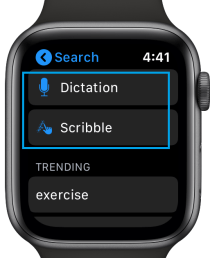 Type of Search on Apple Watch App Store