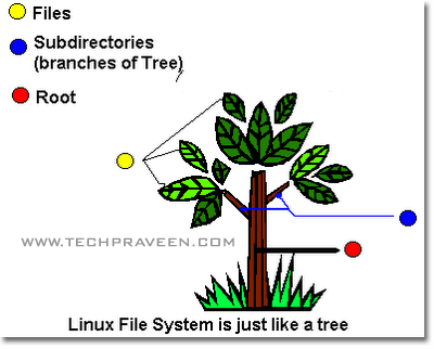 How to Access Linux File System (ext2, ext3) From Windows