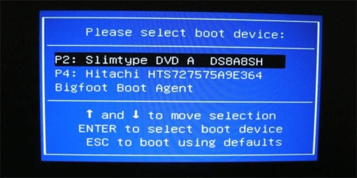 Password Reset Boot Screen