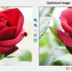 Use Optimized images