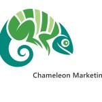 Chameleon marketing concept