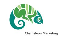 Chameleon marketing concept