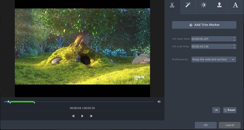 AceThinker Video Master Review Watermark