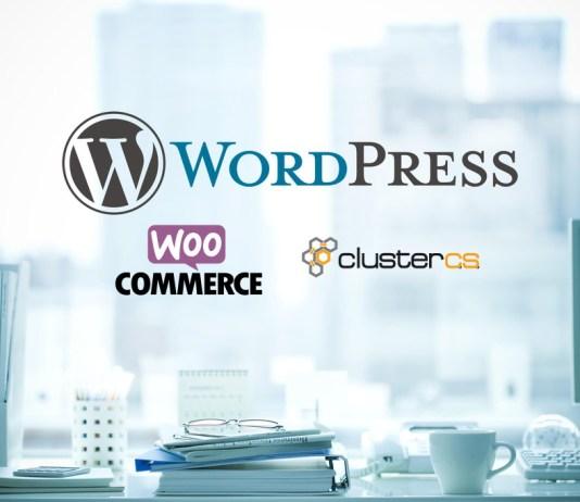 ClusterCS - E-commerce Wordpress Site