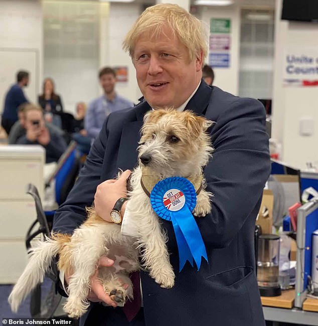 The Prime Minister even brought out his own dog, Dilyn, wearing a rosette which reads: 'Get Brexit done'