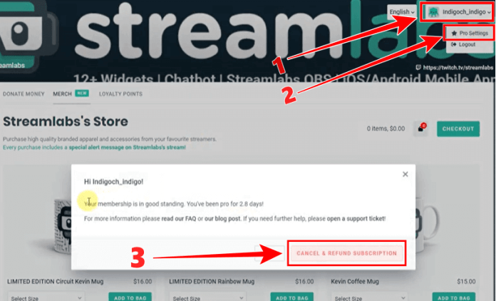 how to cancel streamlabs pro