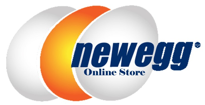 Newegg Online Store - How to Register and Log In