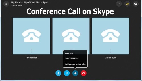 Conference Call on Skype