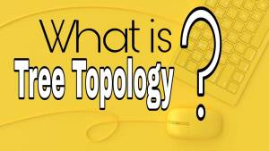 TREE Topology   Advantages and Disadvantages