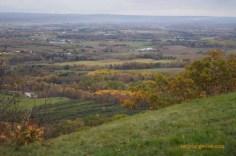 Fall Horizon