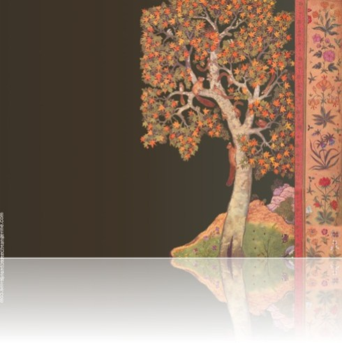 Wallpapers Themed On Original Mughal Paintings
