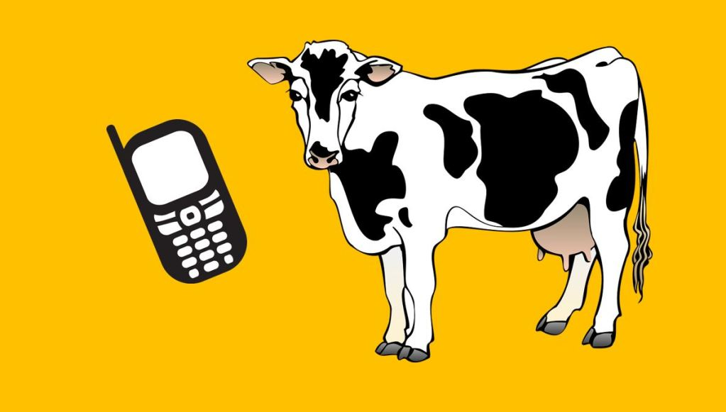 Killing the Sacred Cows of Wireless Cellular Industry ?